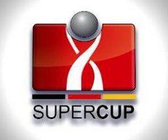 Суперкубок Германии 2013 DFL-Supercup